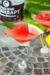 Sweet Watermelon Mint Martini