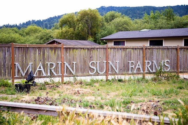 Flavors of West Marin Food Tour