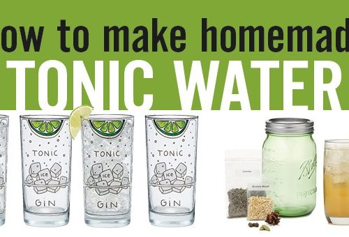 How to Make Tonic Water (DIY homemade tonic water) - www.platingpixels.com