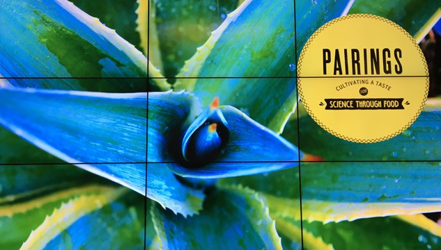 Agave Food Pairings and Exploratorium After Dark | platingpixels.com