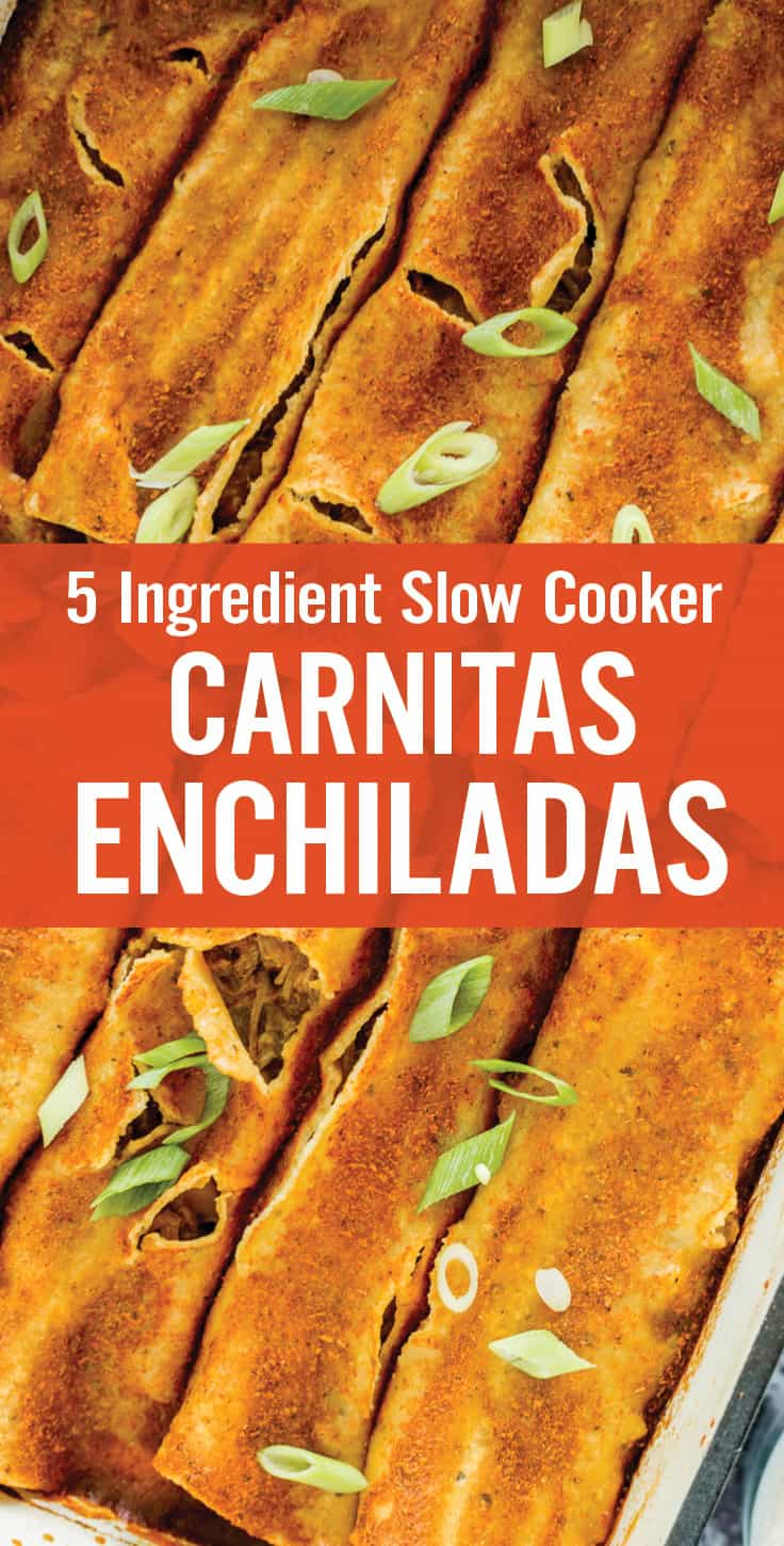 These Slow Cooker Carnitas Enchiladas are super easy and only uses 5 ingredients. Grilled then slow cooked seasoned carnitas, with diced green chilies, shredded cheese, corn tortillas and enchilada sauce. #enchiladas #carnitas #slowcookerrecipe